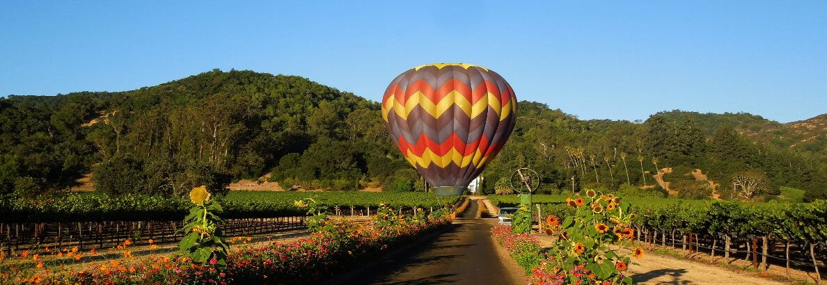 Napa Hot-Air Balloon Ride