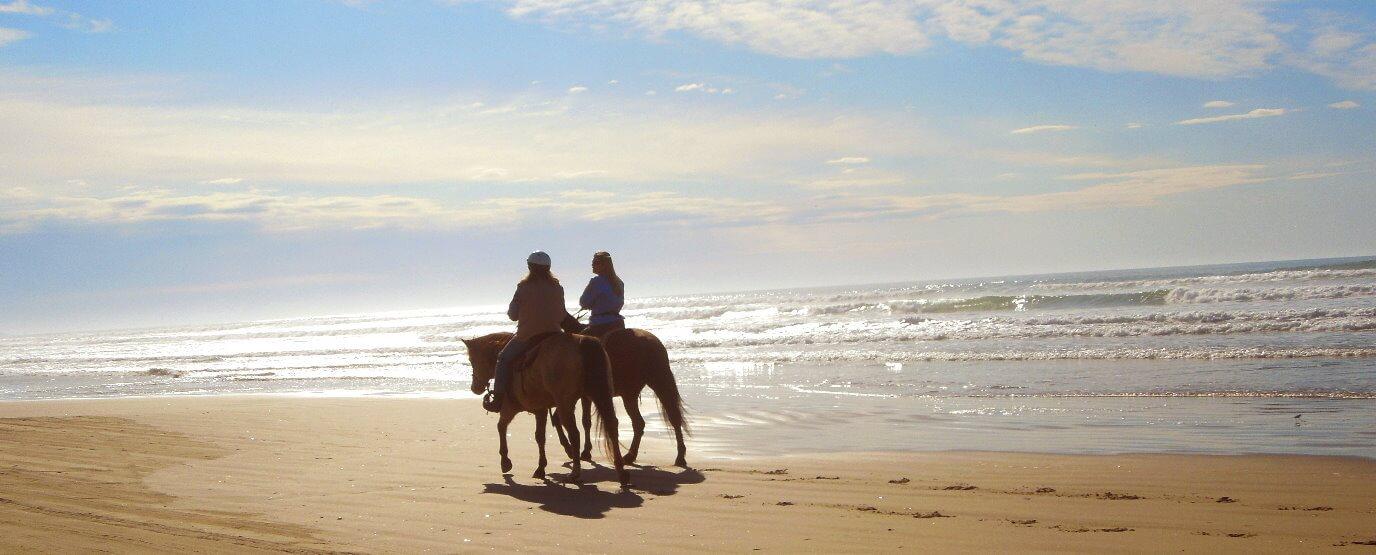 beach_horseback_ride_and_san_francisco_city_tour