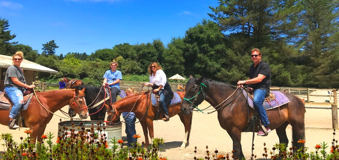 best_equestrian_tours_near_san_francisco_bay_area_tours