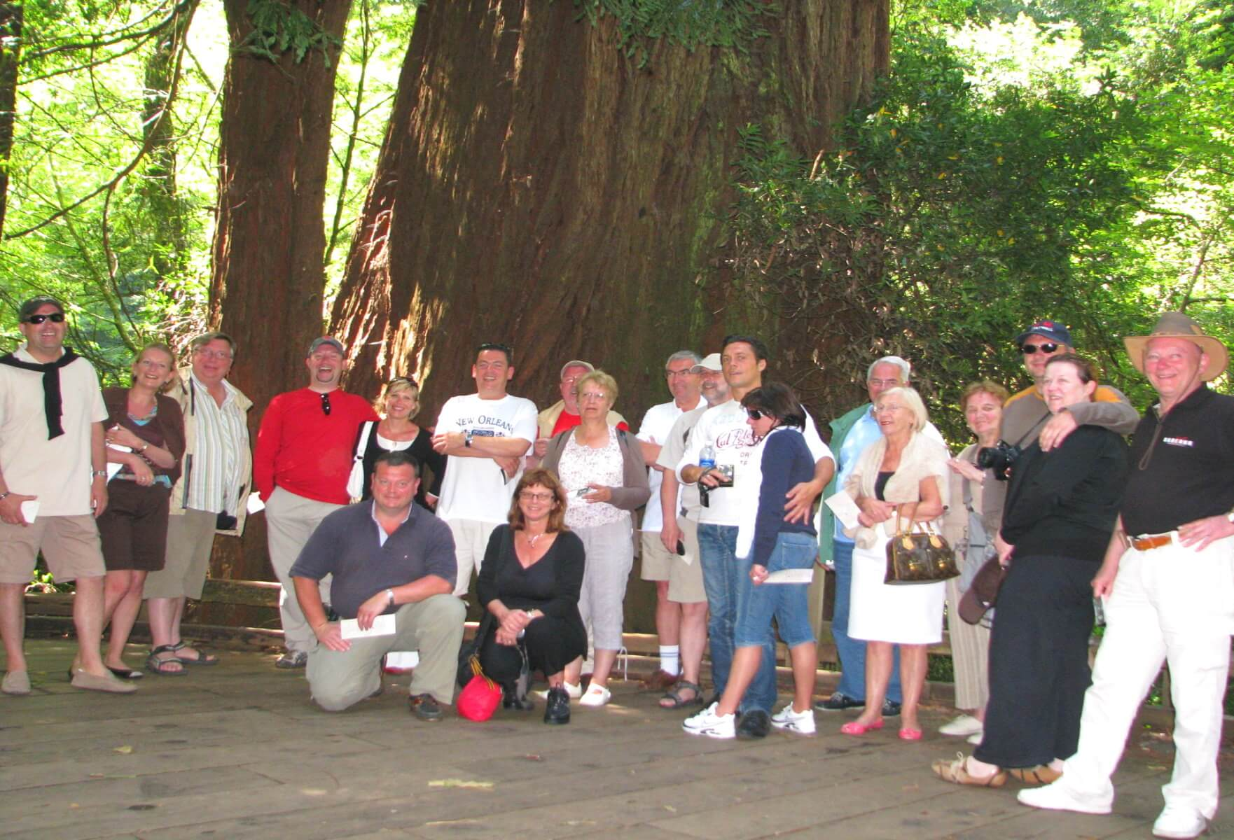 Group bus tour to muir woods from san francisco transportation sfo