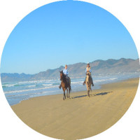 Horseback rides on the beach combined with Alcatraz Island prison tickets