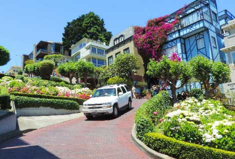 Lombard-Street-SF-Crookedest-Street-city-sightseeing---