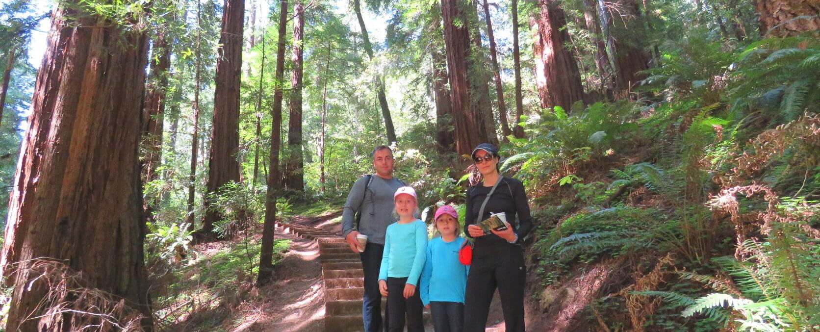 Muir Woods Park of Redwoods Guided Walking Tour
