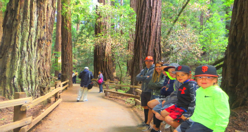 Muir Woods park of redwoods private tour from San Francisco family friendly attractions