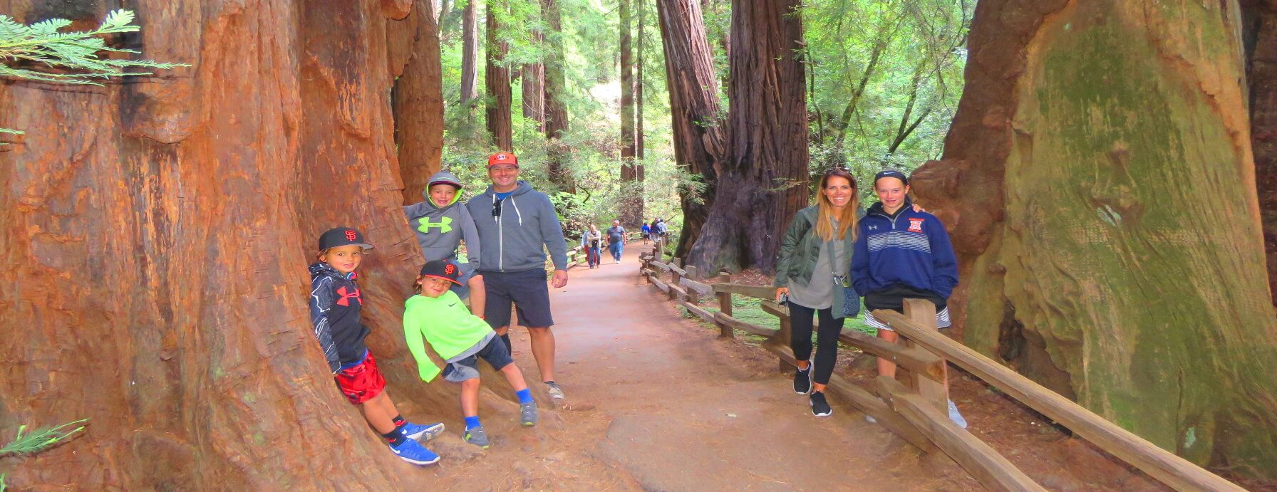 Tips for Taking a Muir Woods redwoods Tour with Kids from san Francisco