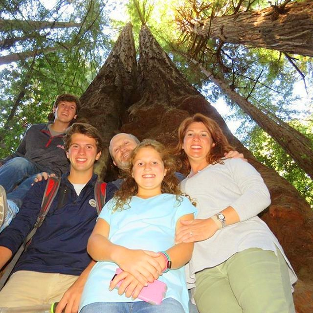 Visit-Muir-Woods-giant-Redwoods-trees-napa-wine-country--