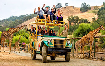 book_african_safari_tours_personalized_adventures