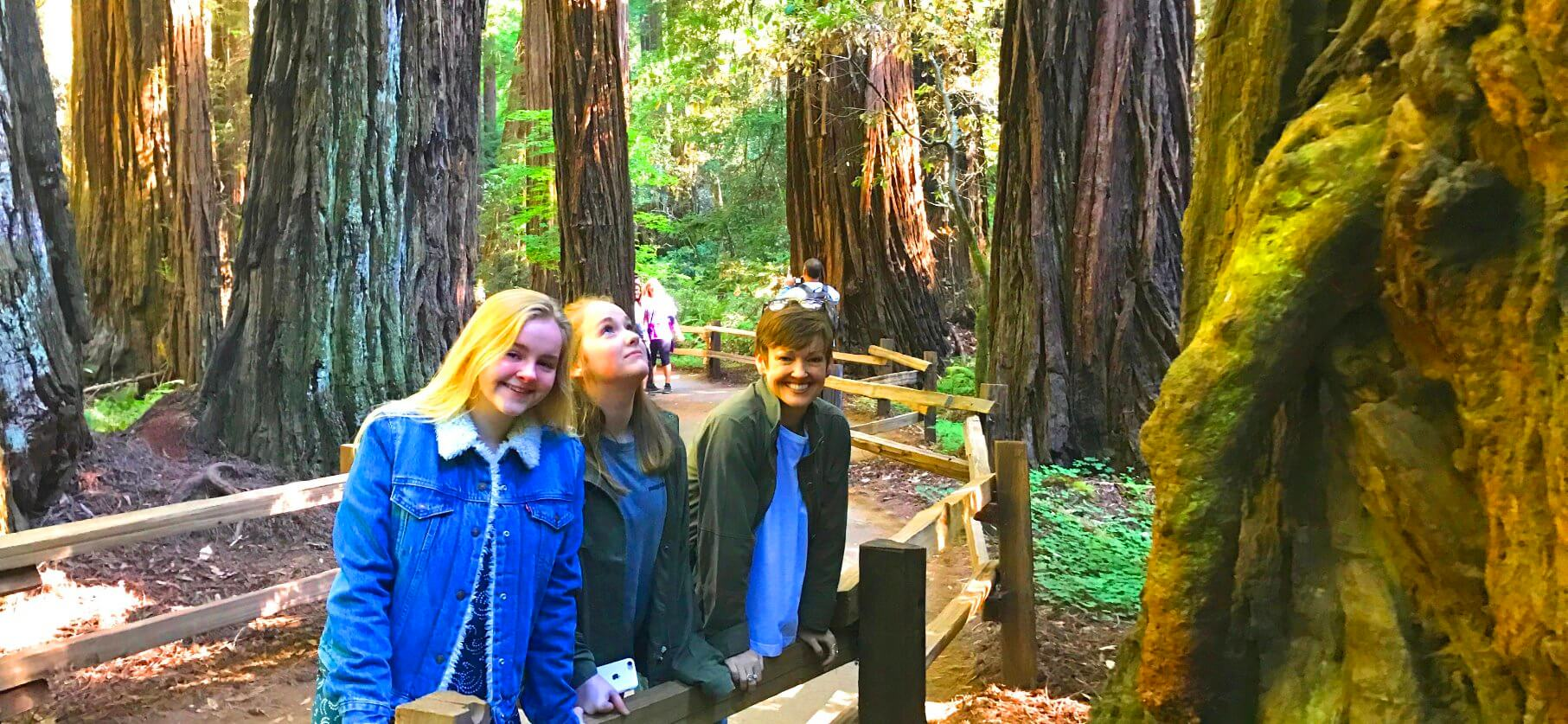 day_trips_to_muir_woods_national_monument_from_san_francisco_private_tours