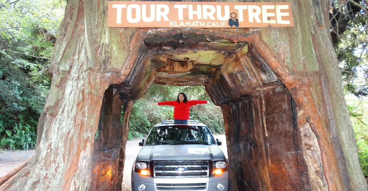 drive-through-big-redwood-tree-drive-thru-giant-sequoia