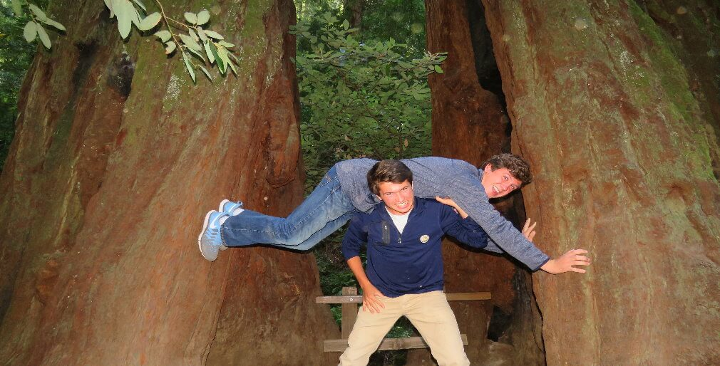 family_vacation_redwoods_and_san_francisco_package_tour_things_to_see_in_sf