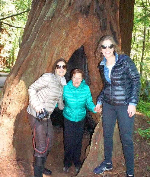 guided-tour-to-Muir-Woods-park-from-napa-valley--