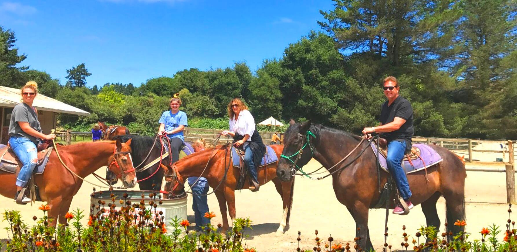 horseback_ride_muir_woods_stinson_beach_bolinas_marin_county