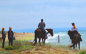 horseback_ride_on_the_beach_santa_cruz_tours