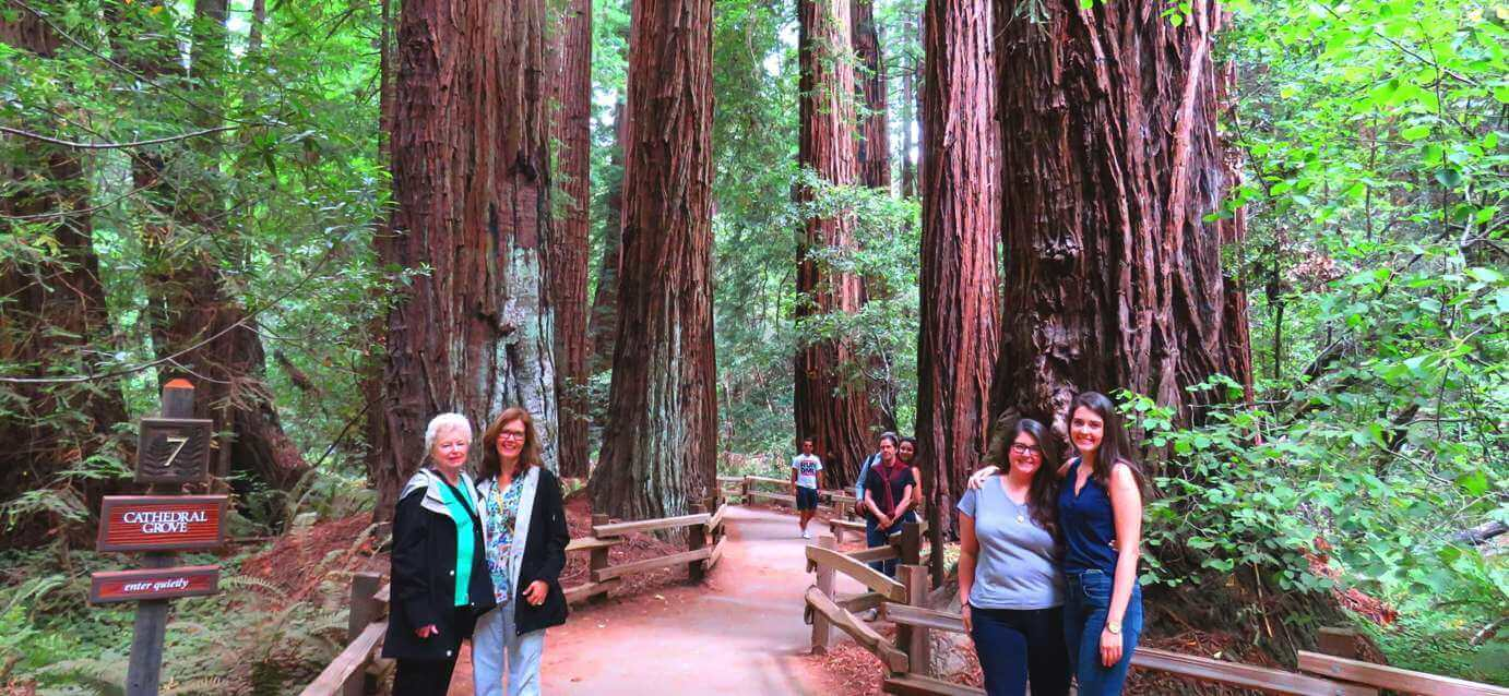how_to_visit_muir_woods_by_shutte_car_and_bike