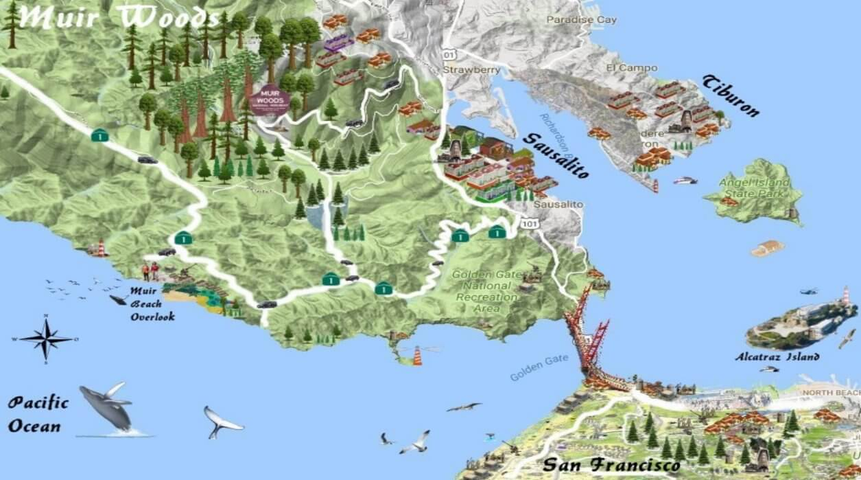 map_of_muir_woods_road_itinerary_from_alcatraz