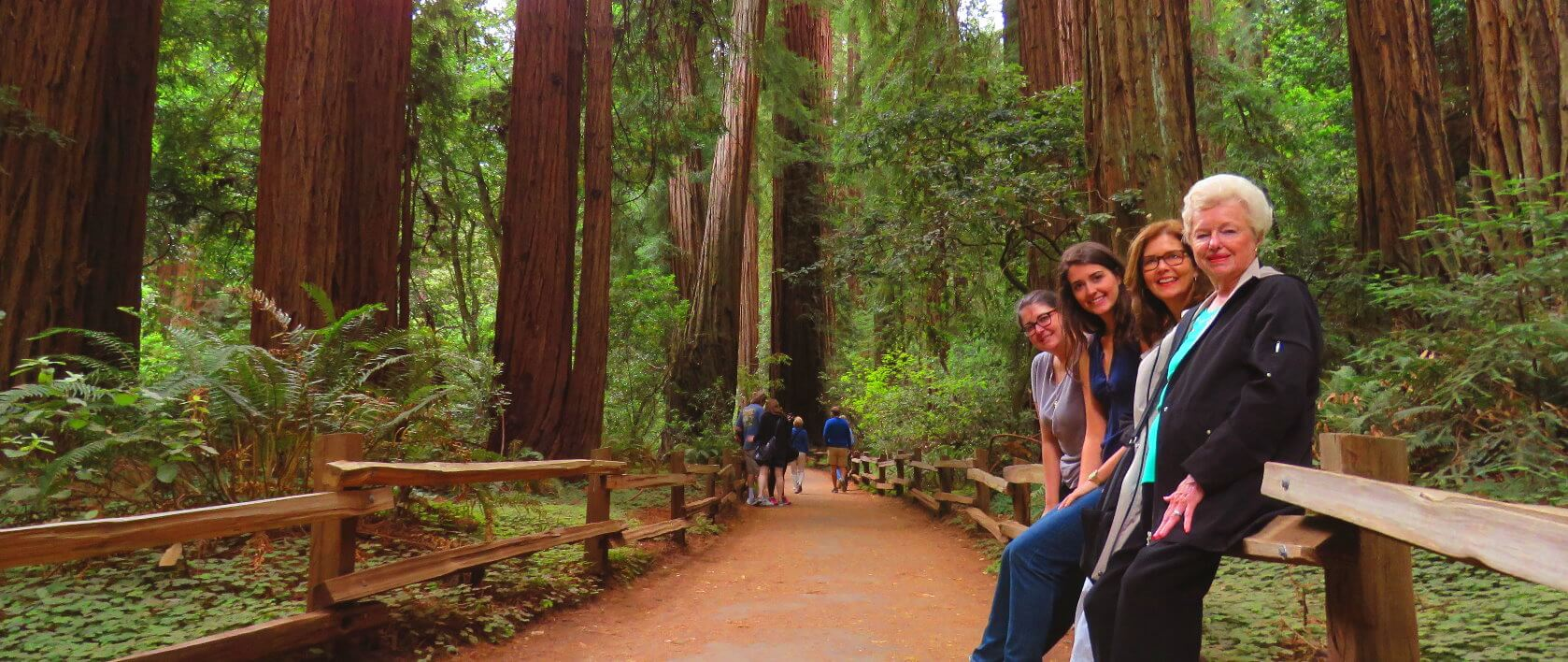 muir_woods_forest_of_giant_redwoods_hike_&_trails