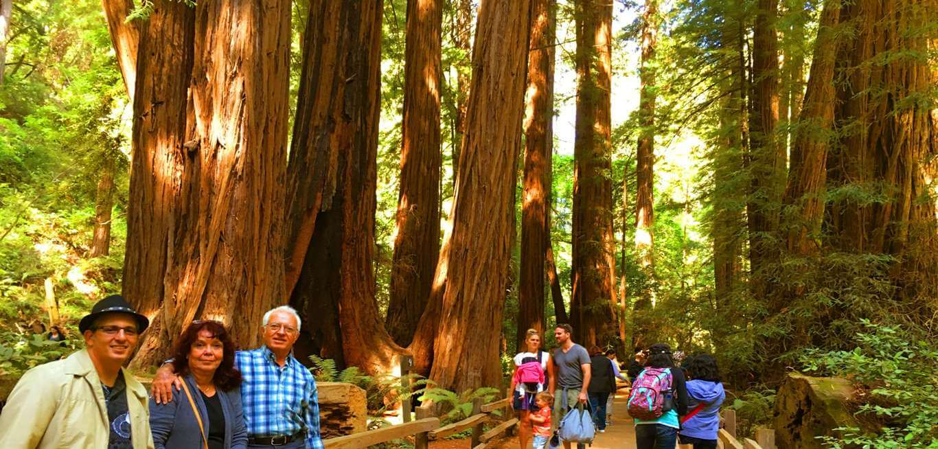 muir_woods_how_to_see_the_big_trees_near_san_francisco