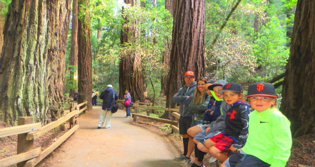 muir_woods_park_of_redwoods_private_tour_from_san_francisco_family_friendly_attractions