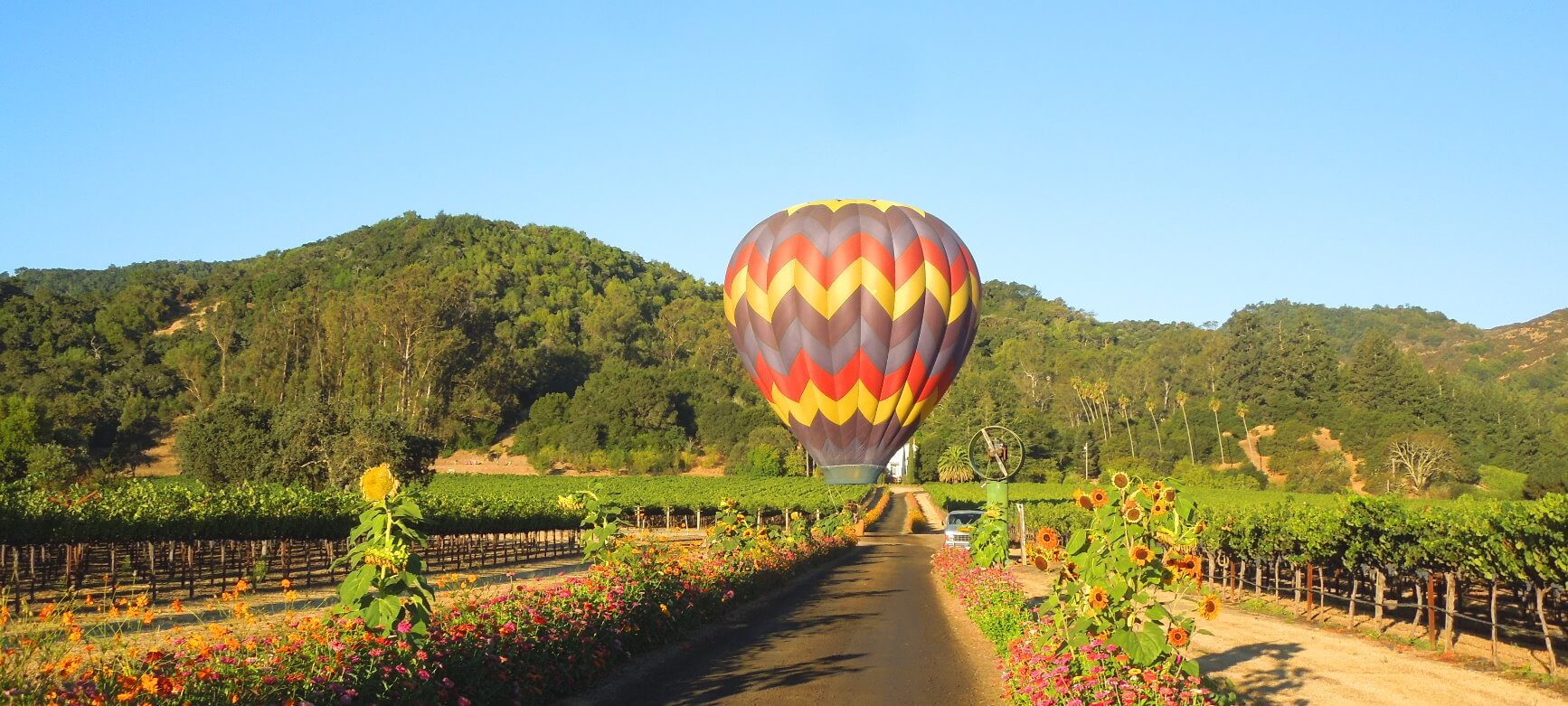 napa-valley-hot-_air-balloon-rides