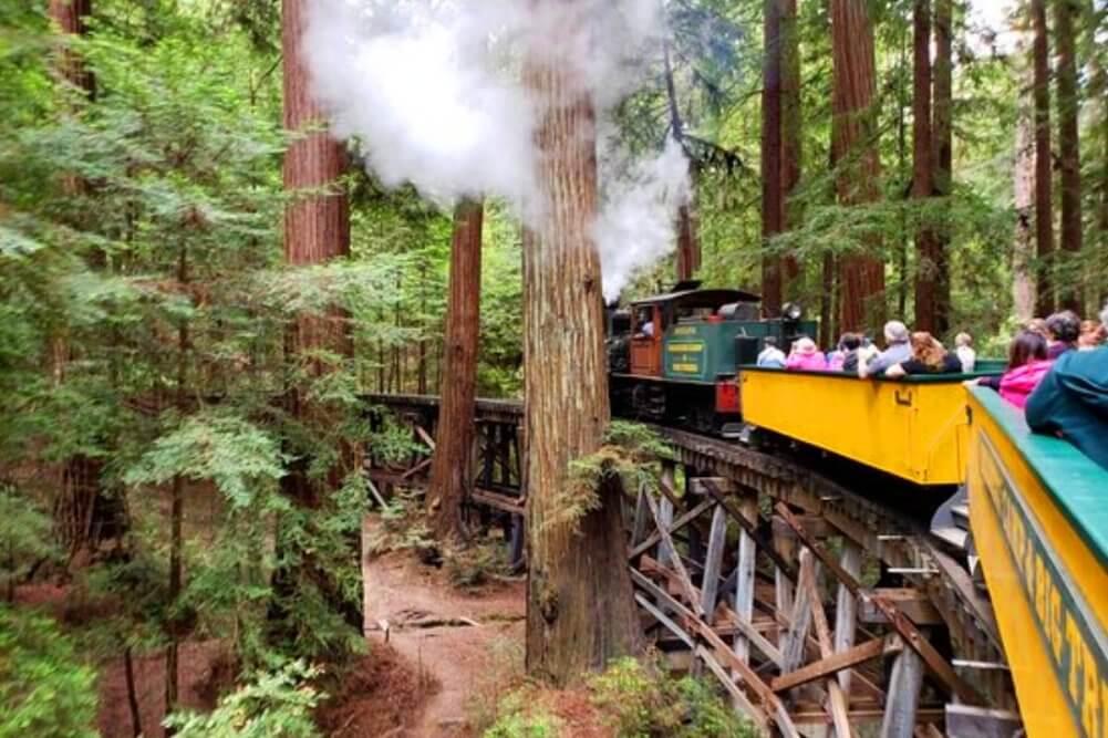 roaring_camp_railroads