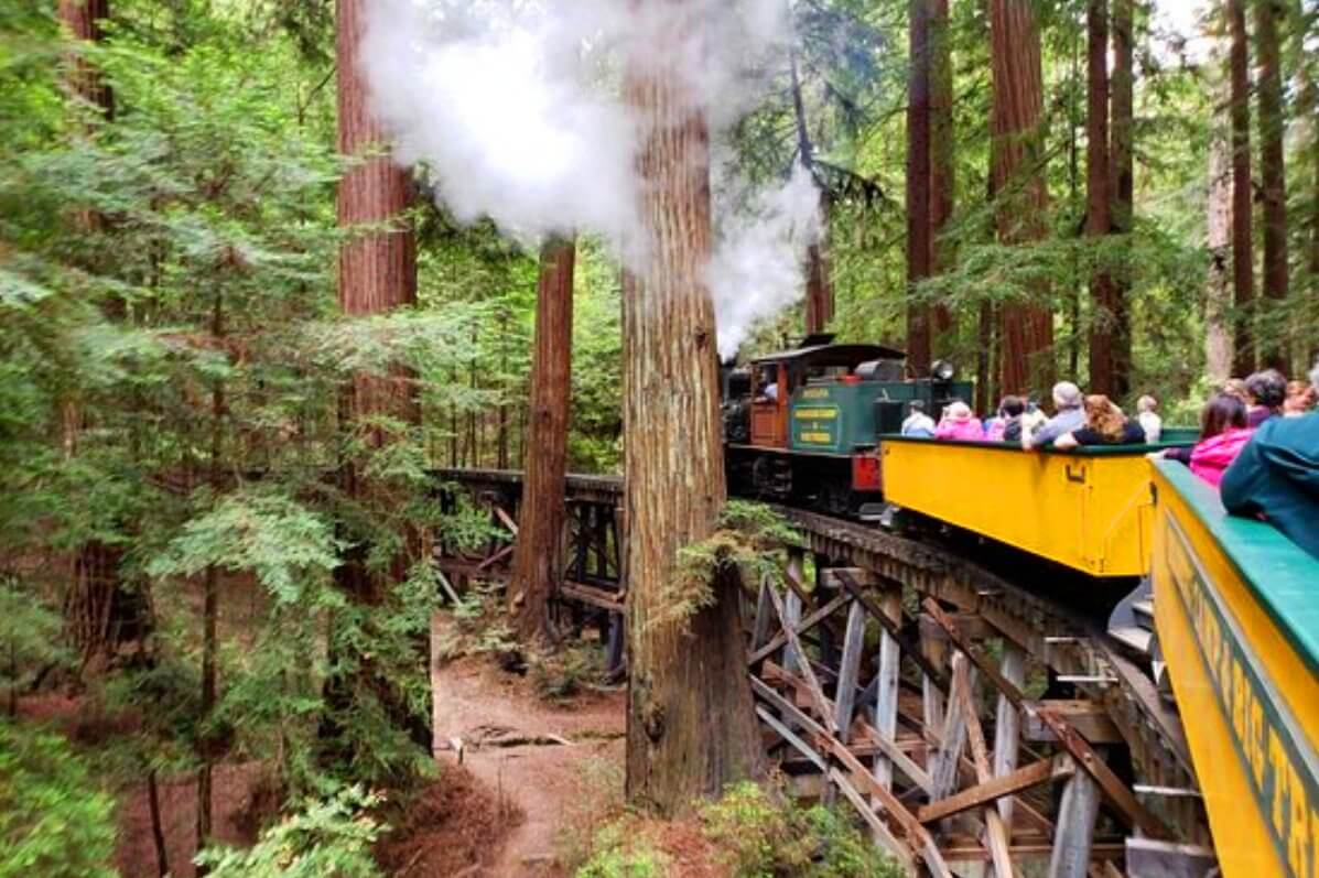 roaring_camp_railroads_day_trips_from_san_francisco