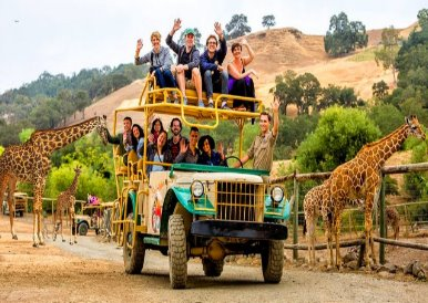 safari_jeep_adventure_redwoods_napa_wine_tour