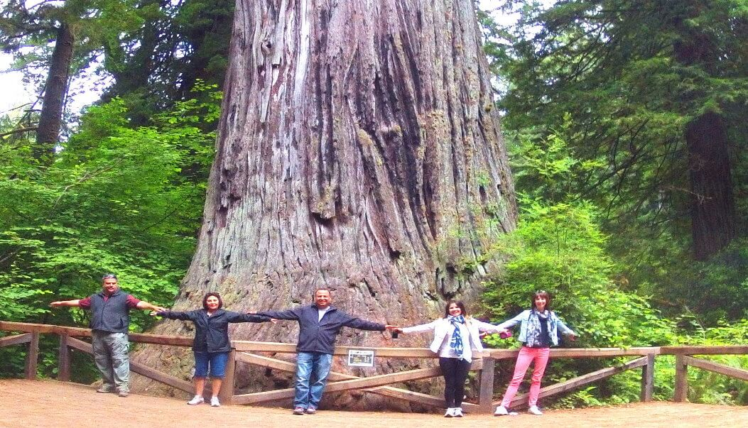 sequoia-national-park-vacation-packages-hotel-yosemite